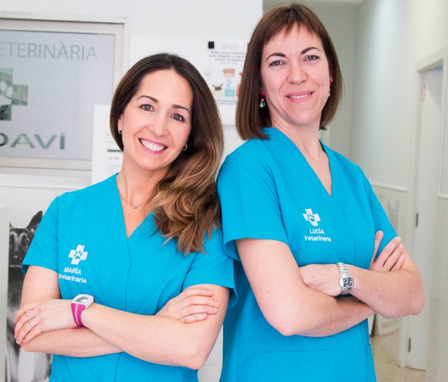 Clínica Veterinaria Sedaví, 10 años ayudándote a cuidar de tu mascota