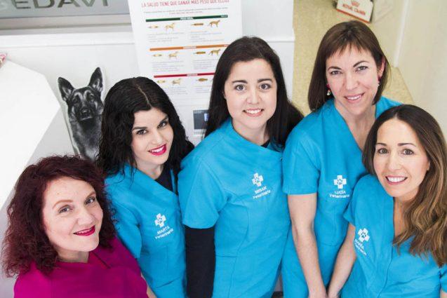 Los servicios distintivos de la Clínica Veterinaria Sedaví