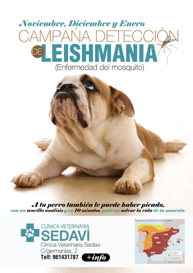 Campaña Leishmania 2014